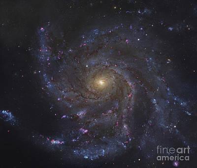 The Pinwheel Galaxy Art Print