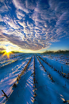 Photograph - The Places Where I've Been by Phil Koch