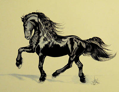 Drawing - The Playful Friesian by Cheryl Poland