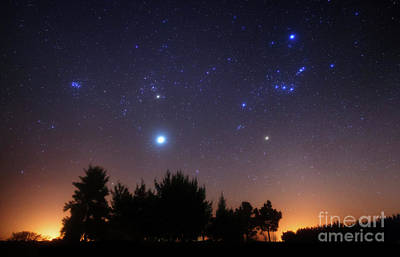 Messy Photograph - The Pleiades, Taurus And Orion by Luis Argerich
