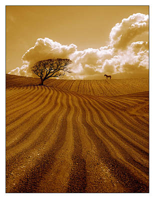 Photograph - The Ploughed Field by Mal Bray
