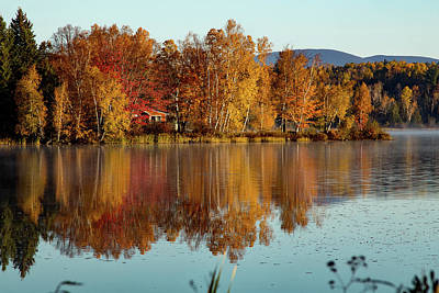 Photograph - The Point Of Maine Fall Colors by Jeff Folger