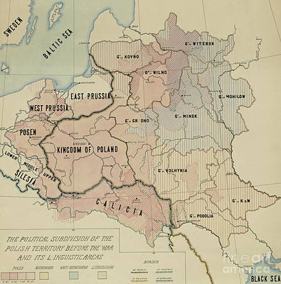 Painting - The Political Subdivision Of The Polish Territory Before The War And Its Linguistic Areas, 1918 by American School