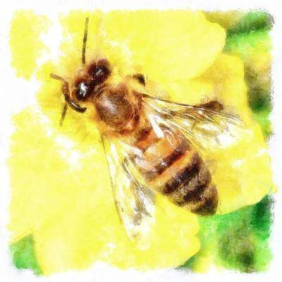 Painting - The Pollen Collector Honeybee Watercolor by Taiche Acrylic Art