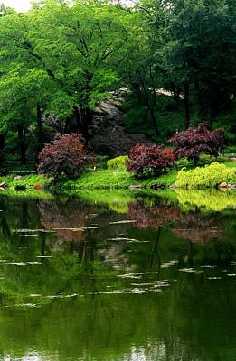 Photograph - The Pond In Central Park by Christopher Kirby