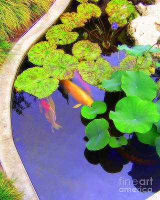 Photograph - The Pond by Jodie Marie Anne Richardson Traugott          aka jm-ART