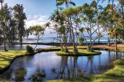 Photograph - The Ponds At Richardson's Ocean Park by Susan Rissi Tregoning