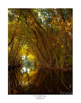 Stocktrek Images - The Portal 1 by Chandra Nyleen