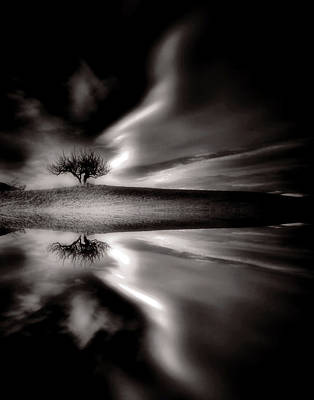Photograph - The Power In Black And White by Tara Turner