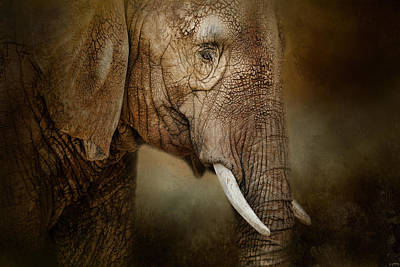 Photograph - The Powerful Elephant by Jai Johnson