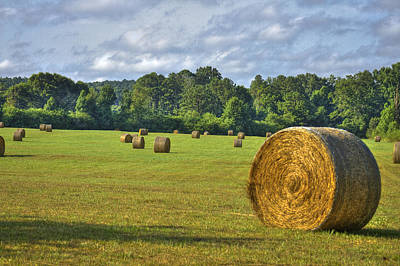 The Productive Southern Hay Field Art Print by Reid Callaway