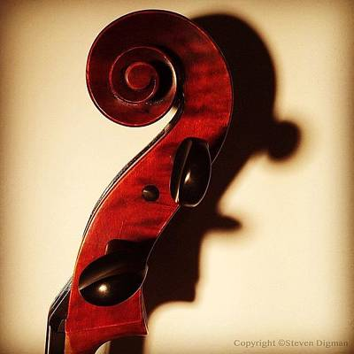 Fiddles Wall Art - Photograph - The Profile  by Steven Digman