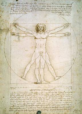 Ink Painting - The Proportions Of The Human Figure  by Leonardo Da Vinci