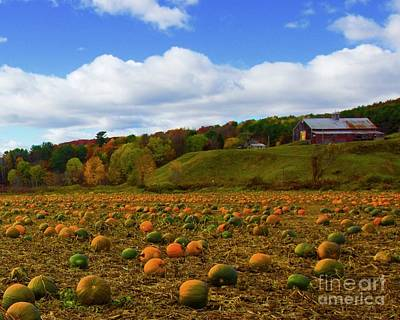 Photograph - The Pumpkin Farm by Alice Mainville