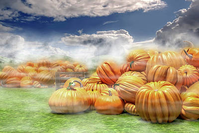 Pumpkin Digital Art - The Pumpkin Field by Betsy Knapp
