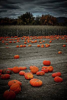 Digital Art - The Pumpkin Patch by Ellen Heaverlo