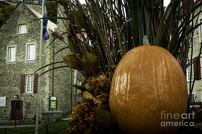 Photograph - The Pumpkin. by Wayne Wilton