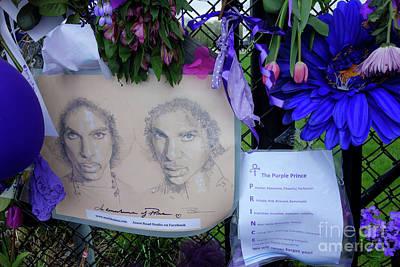 Photograph - The Purple Prince by Jacqueline Athmann