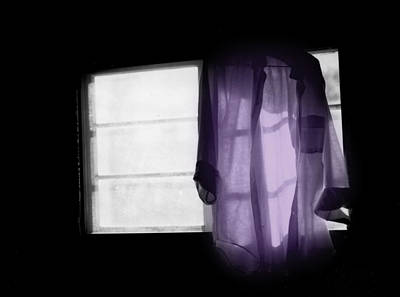Photograph - The Purple Shirt by Wayne King