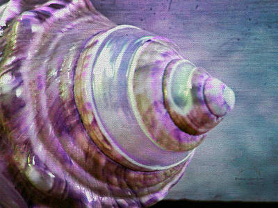 Photograph - The Purple Spiral Seashell by Absinthe Art By Michelle LeAnn Scott