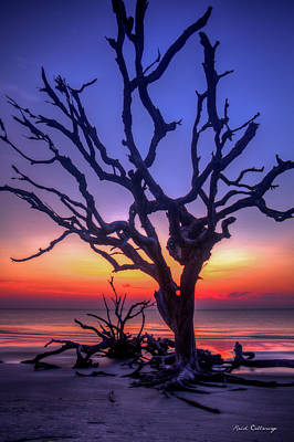 Photograph - The Quiet Driftwood Beach Live Oaks Jekyll Island Georgia by Reid Callaway