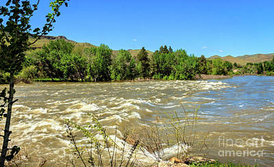 Photograph - The Raging Payette River by Robert Bales