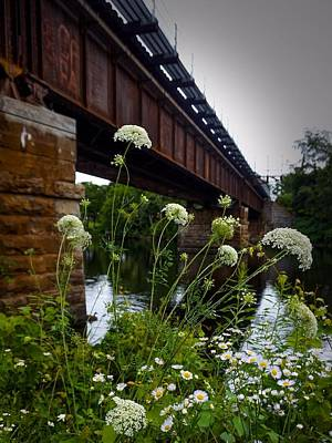 Photograph - The Railroad Bridge by Kendall McKernon