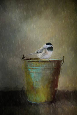 Photograph - The Rain Collector by Jai Johnson
