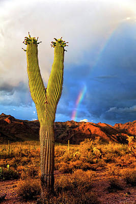 Photograph - The Rainbow Before The Storm by Rick Furmanek
