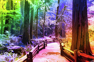 Photograph - The Rainbow Forest by Keith Boone
