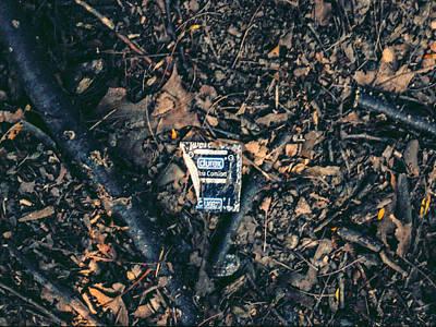 Photograph - The Ramble Durex by Stan  Magnan