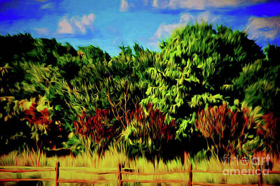 Photograph - The Ranch 12418-1 by Ray Shrewsberry