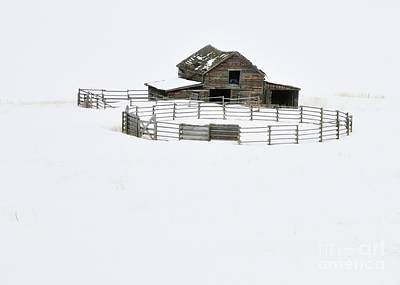 Photograph - The Ranch by Robert Nowland