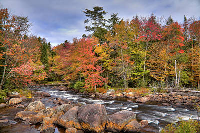 Art Print featuring the photograph The Rapids On The Moose River by David Patterson