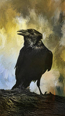 Photograph - The Raven by Barbara Manis