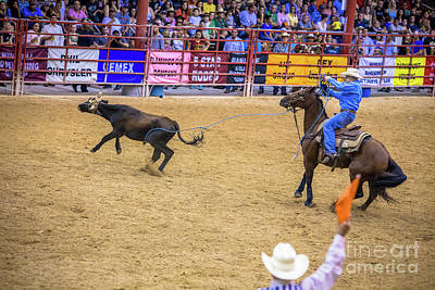 Photograph - The Rear Leg Roping by Rene Triay Photography