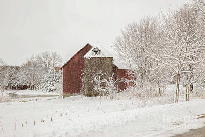 Nikki Vig Royalty-Free and Rights-Managed Images - The Red Barn Made Me Do It by Nikki Vig