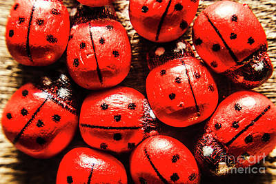 Ladybug Wall Art - Photograph - The Red Bug Out  by Jorgo Photography - Wall Art Gallery