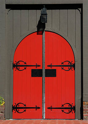 Wall Art - Photograph - The Red Door by Alynne Landers