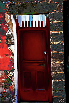 Photograph - The Red Door by Gina O'Brien