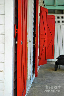 Photograph - The Red Doors by Jost Houk