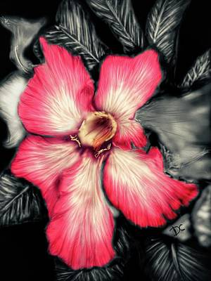 Digital Art - The Red Flower by Darren Cannell