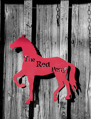 Photograph - The Red Pony by Steph Gabler