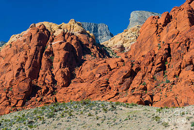 Photograph - The Red Rocks by Anthony Sacco