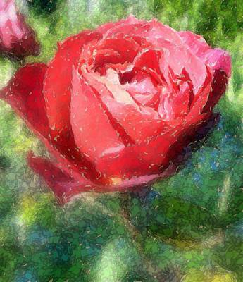 The Red Rose Art Print by Carol Grimes