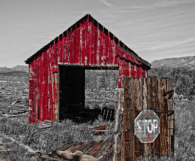 Landscape Photograph - The Red Shack In Doyle by Thom Zehrfeld