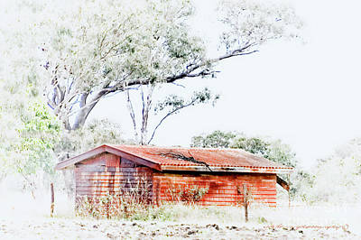 Photograph - The Red Shed by Vicki Ferrari
