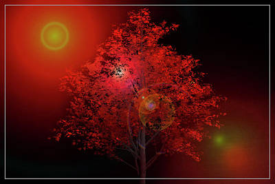 Digital Art - The Red Tree by Debra and Dave Vanderlaan