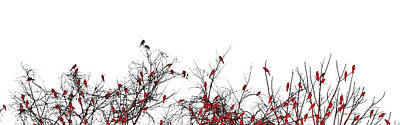 Mixed Media - The Redbird Tree by Susan Maxwell Schmidt