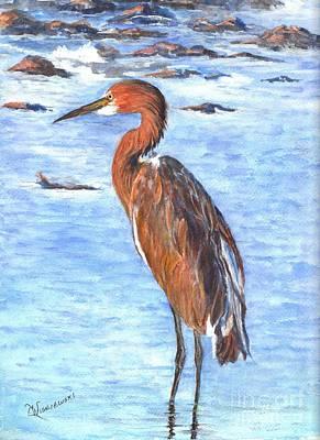 The Reddish Egret Of Florida Art Print by Carol Wisniewski